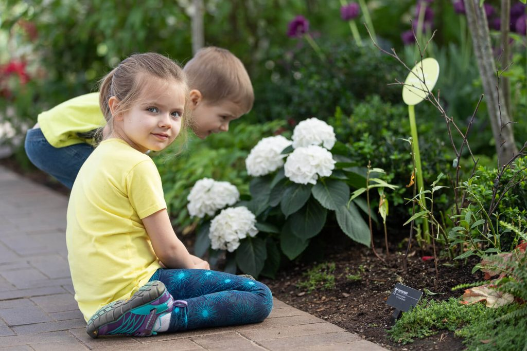 young girl and toddler boy looking for caterpillars among green plants at Meijer Gardens